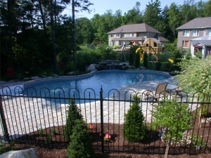 curved swimming pool in the back yard of an Ottawa home