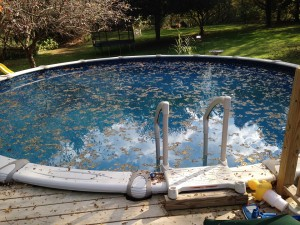 Swimming pool equipment can make a big difference between a frustrating mess and a clean, ready-to-use pool.