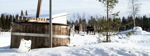 This image shows a hot tub in a snow-covered field, where horses are visible in the background.